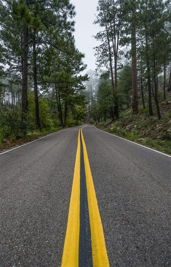 Rose Canyon Lake Road