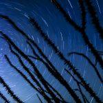 Star trails ocotillo north star